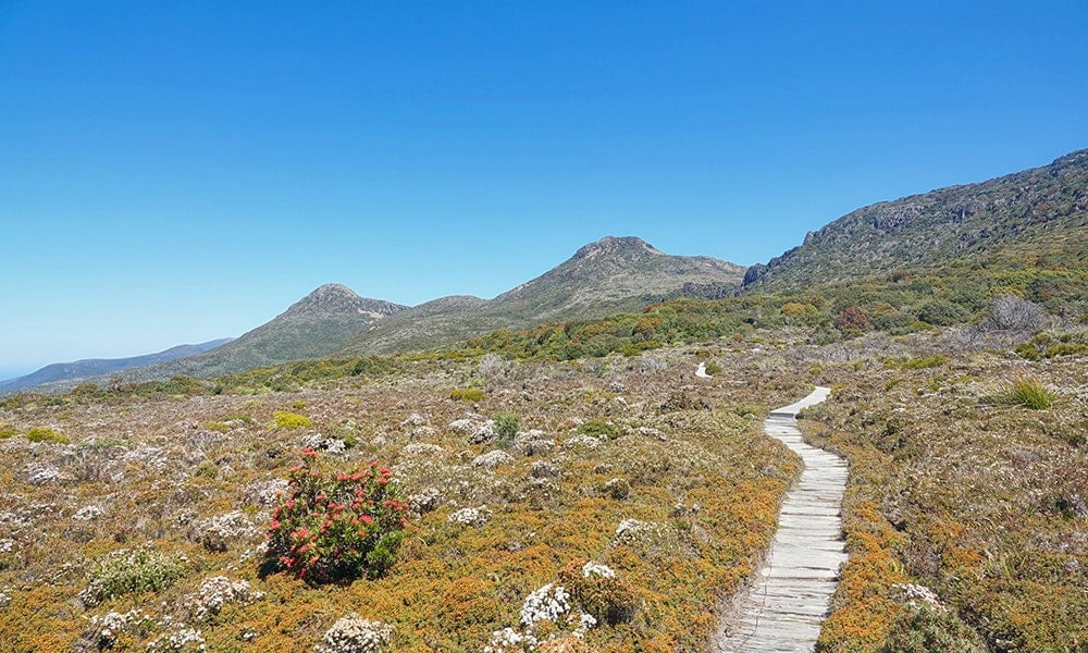 Alpine Tasmania: three stunning alternatives to Cradle Mountain