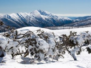 Pushing the Boundaries: backcountry skiing in Australia