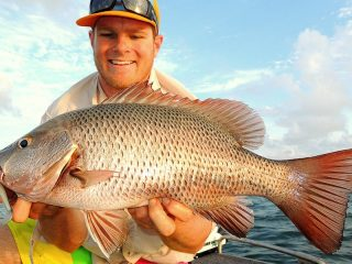 Fishing North Queensland: Barramundi and Mangrove Jack