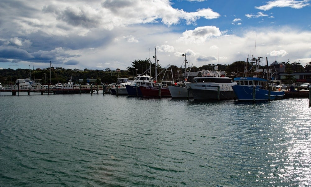 Complete Guide to Lakes Entrance Fishing