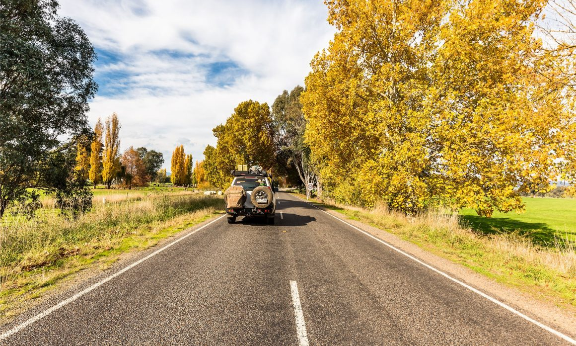 THE MURRAY RIVER ROAD IS A GREAT DRIVE