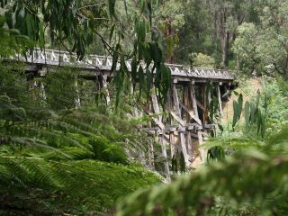 Timber Trestle Bridge in Noojee